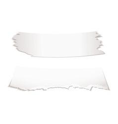 Paper scraps vector image vector image