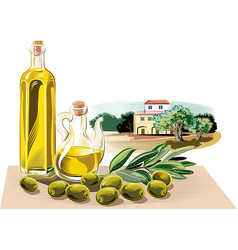 Composition with olives an olive branch a bottle vector