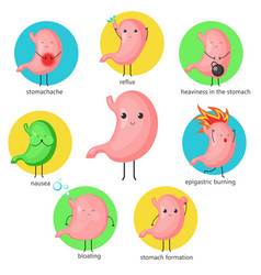 cute cartoon stomach character set flat vector image
