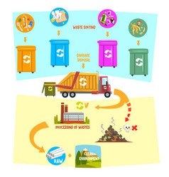 Flat infographic showing waste recycling vector