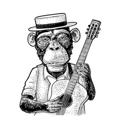 Monkey dressed hat and shirt holding guitar vector
