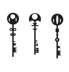 silhouettes of the keys vector image