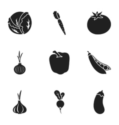 Vegetables set icons in black style Big vector image