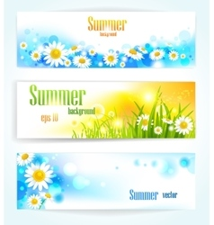 Set of positive floral banners vector image