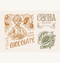 cocoa beans and chocolate woman harvests vintage vector image