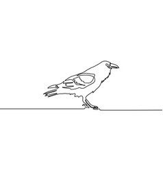 continuous line raven isolated on white background vector image