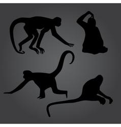Monkey shadows silhouette set eps10 vector