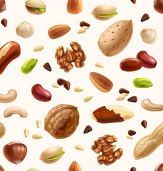 Nuts seamless patern vector image
