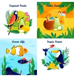Tropical Design Concept Set vector