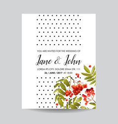 wedding invitation template with rowanberry vector image