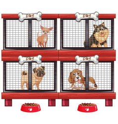 Four types of dogs in cage vector