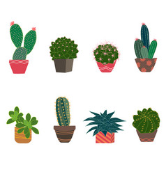 Set of cactus and succulent plants vector