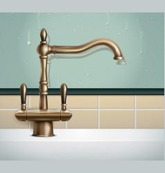 vintage style faucet composition vector image