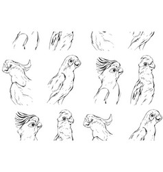 hand drawn abstract textured graphic vector image vector image