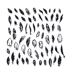 Doodle ink decorative feathers Hand drawn traced vector