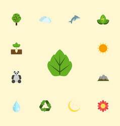 flat icons blossom wood night and other vector image
