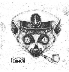Hipster animal lemur captains cap and pipe vector