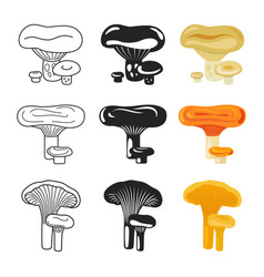 mushroom icons autumn mushrooms set vector image