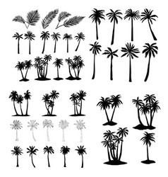 Palm tropical tree set icons black silhouette vector