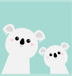 two koala bear set cute kawaii animal cute vector image