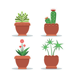 Green fresh room plants grown in big clay pots set vector