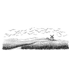 rural field with ripe wheat on background of mill vector image