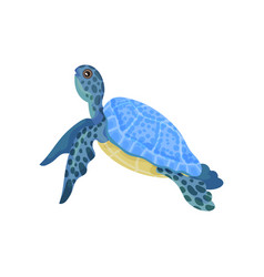 Turtle with light blue armor vector