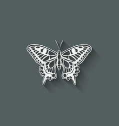 white butterfly machaon vector image vector image