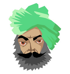 indian man in turban vector image