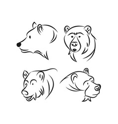 Bear icon concept for design vector