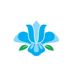 blue flower logo image vector image