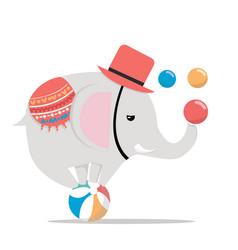 circus elephant on ball vector image