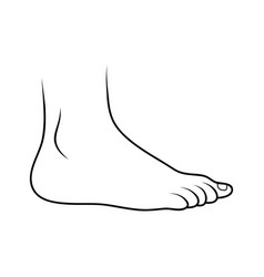 Foot icon outline design isolated on white vector