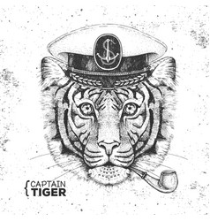 hipster animal tiger captains cap and pipe vector image