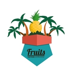 Pineapple fruit and summer concept vector