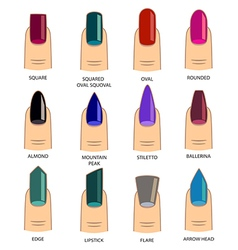 Set of different shapes of nails on white nail vector