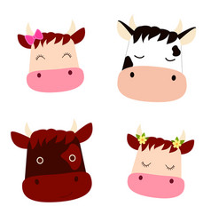 Set with cute heads cows with flowers bow vector