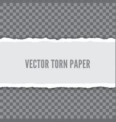 Torn paper realistic vector