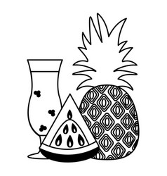 watermelon pineapple juice tropical fruit vector image