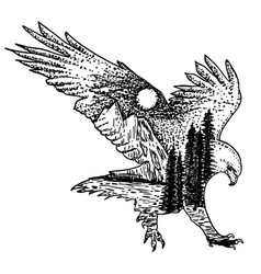 stylized decorative eagle ink hand drawn vector image