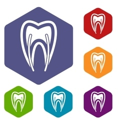 Tooth cross section icons set vector image vector image