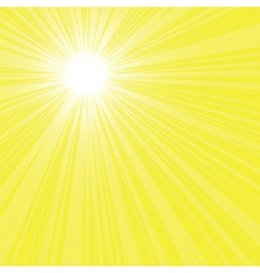 bright sun rays vector image