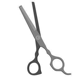 Grey scissors vector image