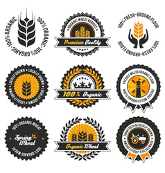 organic wheat label set vector image