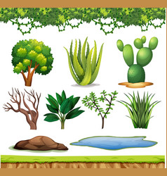 Set small plants with no flowers on white vector