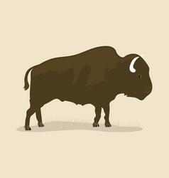 vintage buffalo vector image