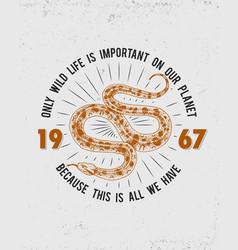 viper snake serpent cobra and python anaconda or vector image