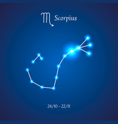 Zodiac constellation scorpius scorpion vector