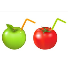 apple and tomato vector image