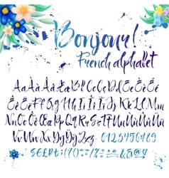 Calligraphic french alphabet with decorations vector